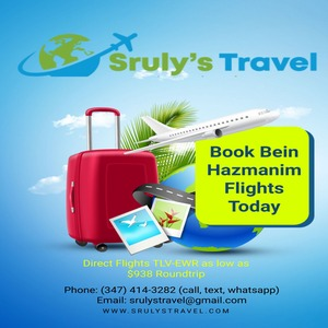 Sruly's Travel